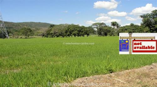 thumbnail for LA VEGA: PRODUCING RICE FARM